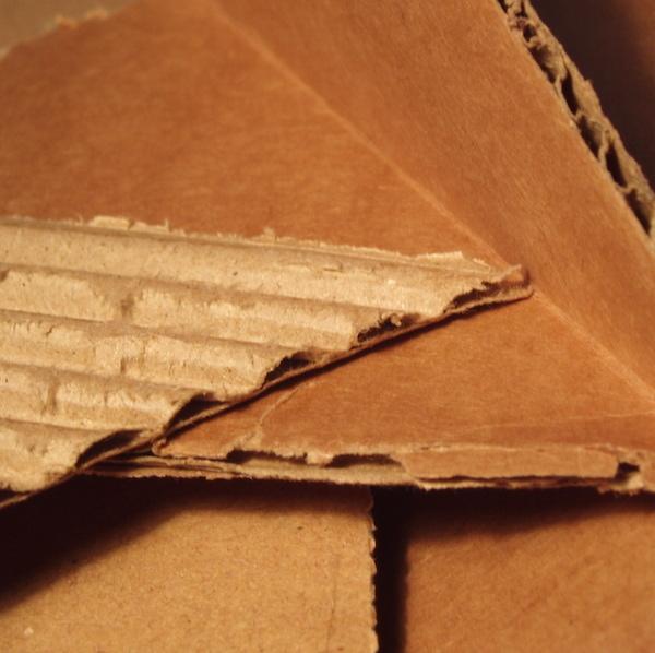 December School Holiday Programme: Cardboard Creativity